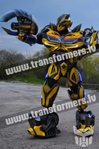 Bumblebee 2020